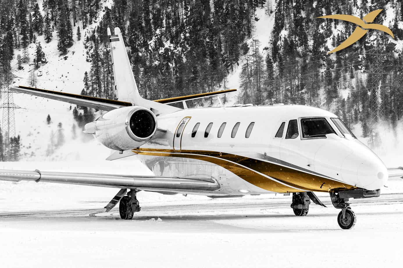 Citation Excel Private Jet Charter